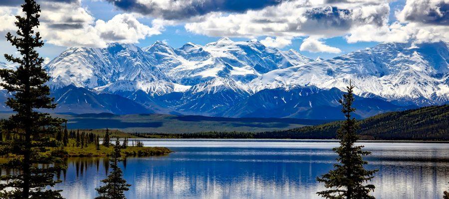 denali national park alaska usa